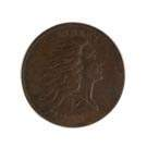 1793 Large One Cent Flowing Hair/Wreath Coin