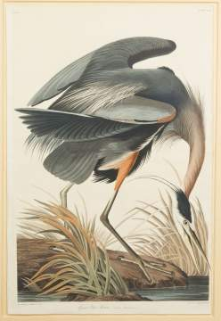 "John James Audubon (American, 1785-1851) ""Great Blue Heron"""