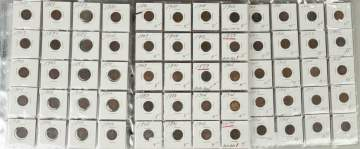 Collection of Indian Head Pennies