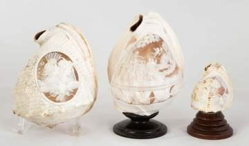 19th Century Carved Conch Shells