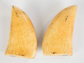 Pair of 19th C. Polychrome Scrimshaw Whale's Teeth