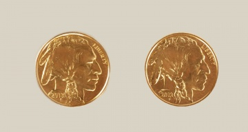 (2) US American Buffalo 2013 One Ounce Gold Coins