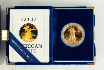 US American Eagle One Ounce Proof Gold Coin