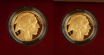 (2) US American Buffalo 2011 One Ounce Gold Proof Coins