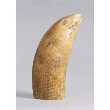 19th Cent. Scrimshaw
