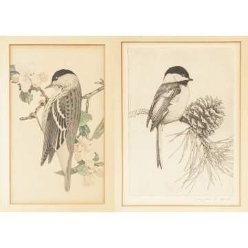 Charles Emile Heil  (MA, 1870-1950), Watercolor & etching of birds
